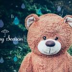 梅雨と熊と器と野菜の話