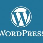 cssやjavascriptファイルを参照する際にタイムスタンプを自動挿入する@WordPress