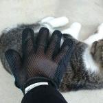 手袋型素晴らしい……!