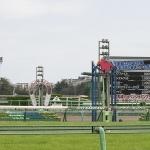 夢の第11レース